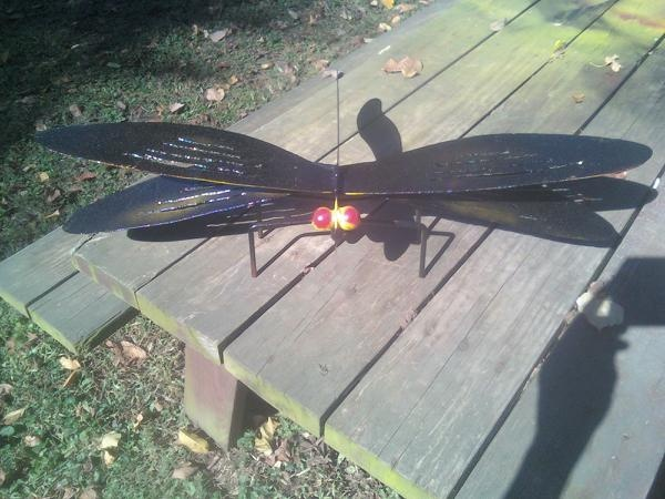 giant dragonflyGiants Dragonflies, Projects