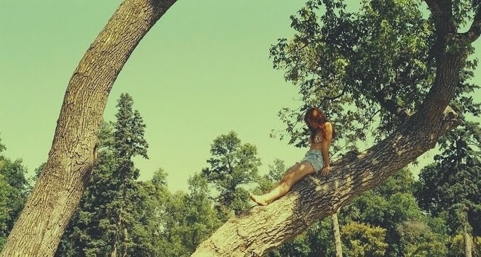 ~Summer 3, Climbing Trees, Young Heart, Trees Hugger, Climbing Baby, Pictures Worth