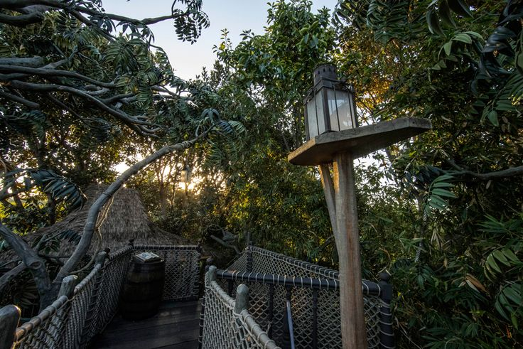 Leaves sway with the breeze at Tarzan's Treehouse and create a quiet soundtrack.