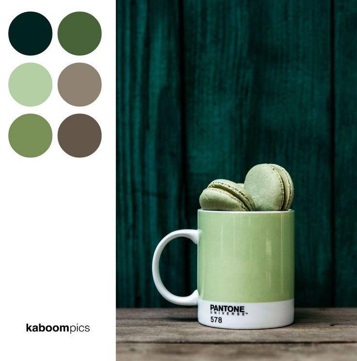 GREEN MACAROONS IN PANTONE MUG