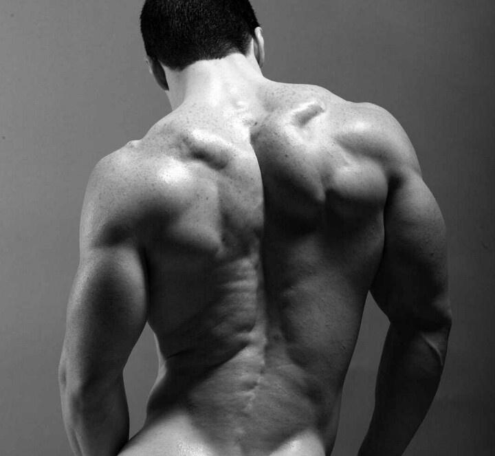 fine art nude male muscle