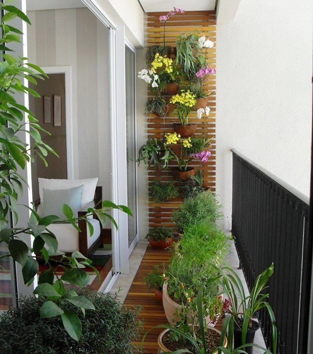 SPACE: BALCONY. i love the neatness of this small balcony garden.