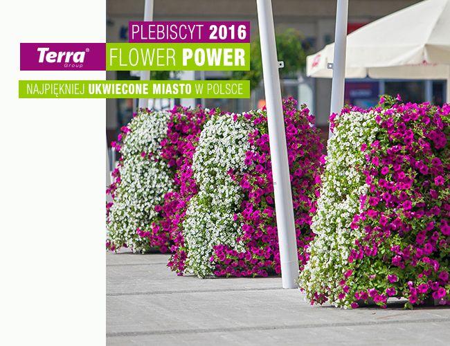 Plebiscyt Terra Flower Power 2016 – już niedługo! | Inspirowani Naturą