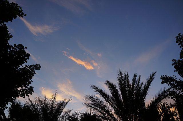 Sunset lights & shadows at Donnafugata, Contessa Entellina   Flickr #westsicilywine