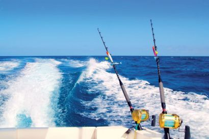 24 best things to do in mexico images on pinterest for Bolo sport fishing
