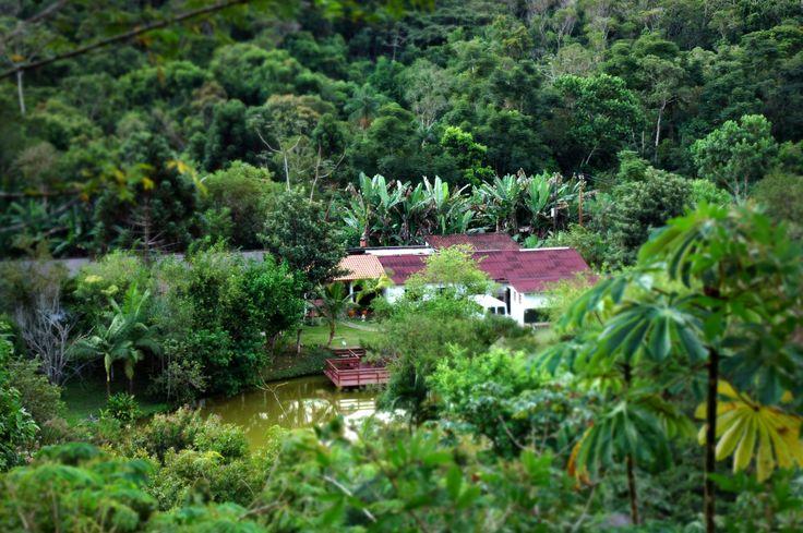 Pousada Salve Floresta, Tapiraí, São Paulo - Brasil. Mata Atlântica. Mitten in dieser tropischen Idylle, in einem von sanften Hügeln umgebenen Tal, liegt die Pousada Salve Floresta in einem 6000 Hektar großen Naturschutzgebiet. Diese wurde 1994 von dem brasilianischen Soziologen und Umweltschützer Dr. Antonio Carlos Soares Pinto ins Leben gerufen. Seitdem bemüht er sich, zusammen mit seinem langjährigen Team und seiner Familie, den Wald mit ununterbrochenem Engagement und Nachhaltigkeit zu…