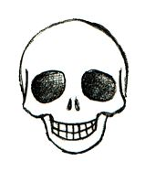How to draw all types of skulls! Great for my future doodling in cla--I MEAN paying attention...you know, in class