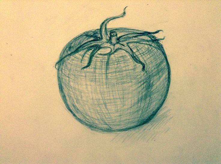 Otis college cross contour  , tomato sketch
