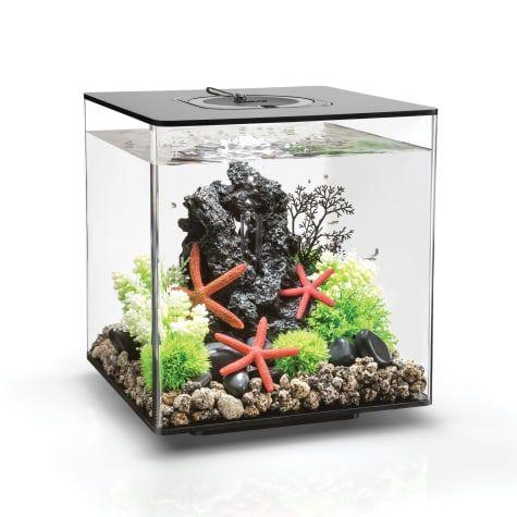 Biorb Cube Black Aquarium With Micro Light 8 Gallon 12 6 In 2020 Biorb Aquaponics Aquarium