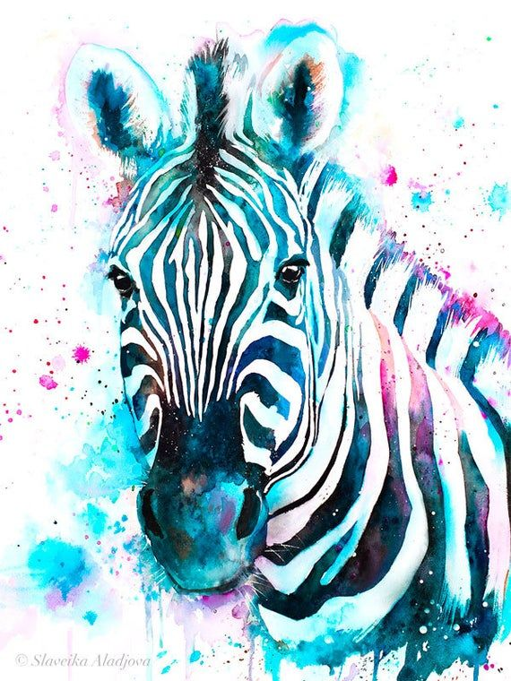 Blue Zebra Watercolor Painting Print By Slaveika Aladjova Art