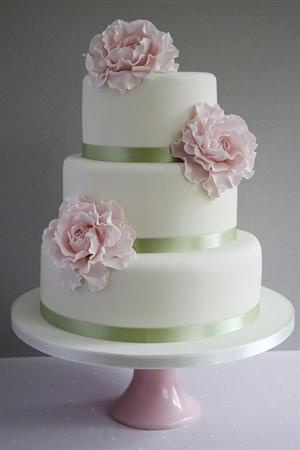 Pink Peony Wedding Cake- but with either light aqua for the bands or lace
