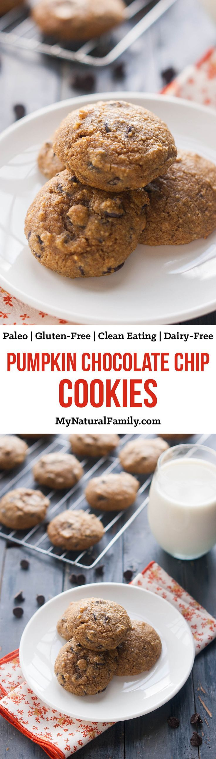 These are really good! I'm so excited to find a good Paleo pumpkin cookie recipe.