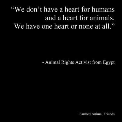 We don't have a heart for humans and a heart for animals. We have one heart or none at all. ~ Animal Rights Activist from Egypt