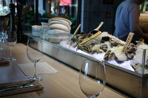 Oyster & Chop  - Auckland