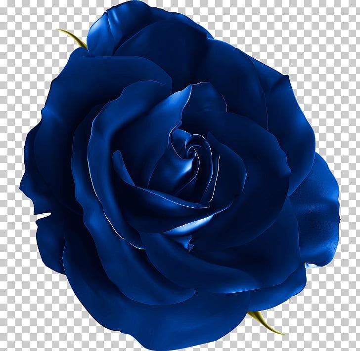 Blue Rose Petals Clip Art