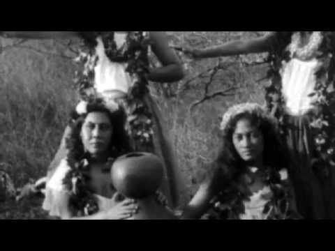 the native hawaiian language What is pidgin the origins of pidgin  to be native speakers of the creole language  in da 19 th century cuz hawaiian was da main language people was using in.