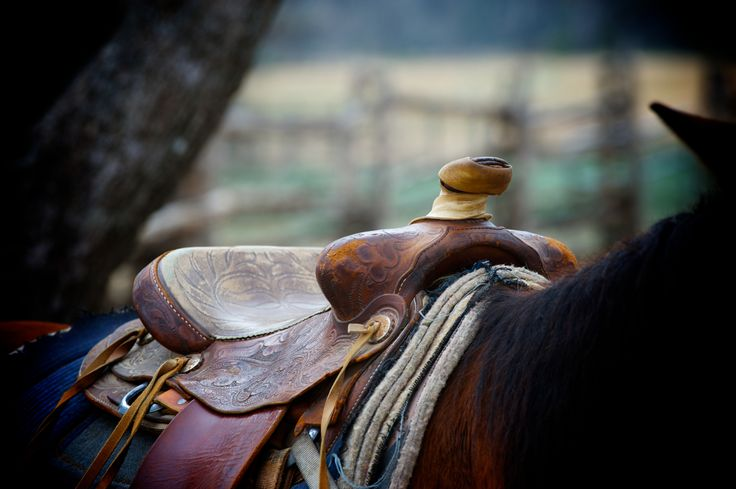 Get my 7 FREE basic photography tips - you NEED to know right here; http://pw5383.wixsite.com/free-photo-tips | Photographer Pernille Westh | Western Saddle photographed in Texas
