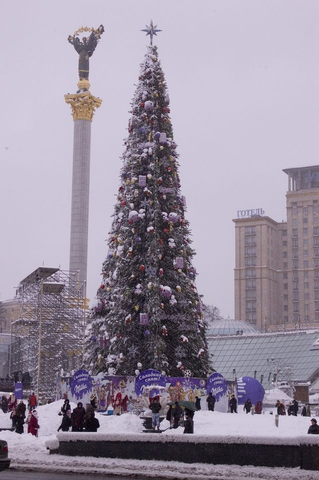 Ukraine Christmas Traditions: Christmas Tree in Kiev