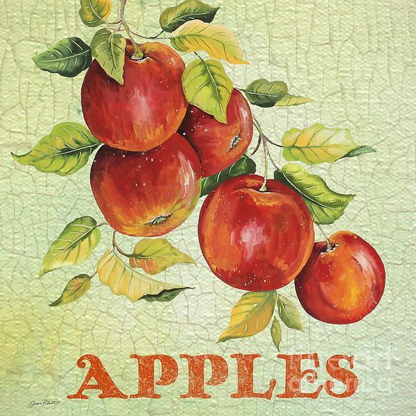I uploaded new artwork to plout-gallery.artistwebsites.com! - 'Apples on Watercolor' - http://plout-gallery.artistwebsites.com/featured/apples-on-watercolor-jean-plout.html via @fineartamerica