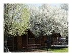 Nashville, Tennessee Cabin Accommodations | Nashville KOA