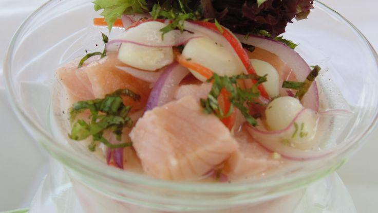 Cebiche salmón fusión: Dados de salmón macerados en limón, jengibre y leche de coco, con choclos y cilantro.