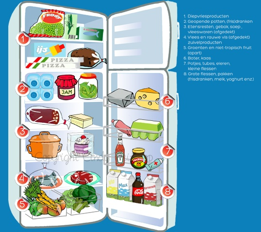 fridge illustration