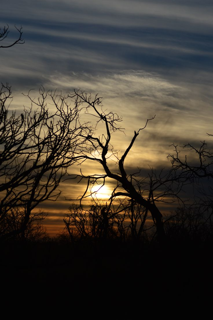 An incredible sunset in the middle of winter at Sondela which is only and hour and a half's drive out of Johannesburg. A lovely nature reserves with small game and excellent facilities