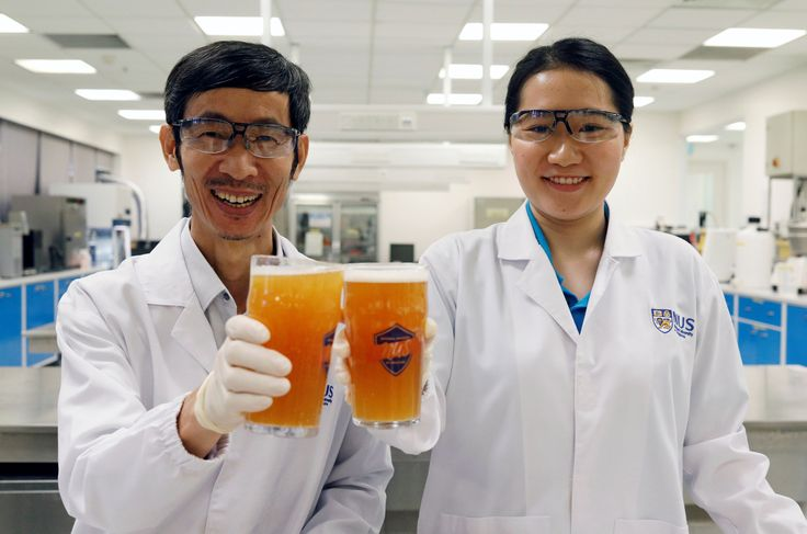 Immunrendszert, gyomor egészségét javító sört állítottak elő szingapúri kutatók