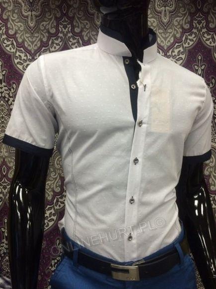 Koszula Męska Sedna ANT4  _A11 (M-3XL)