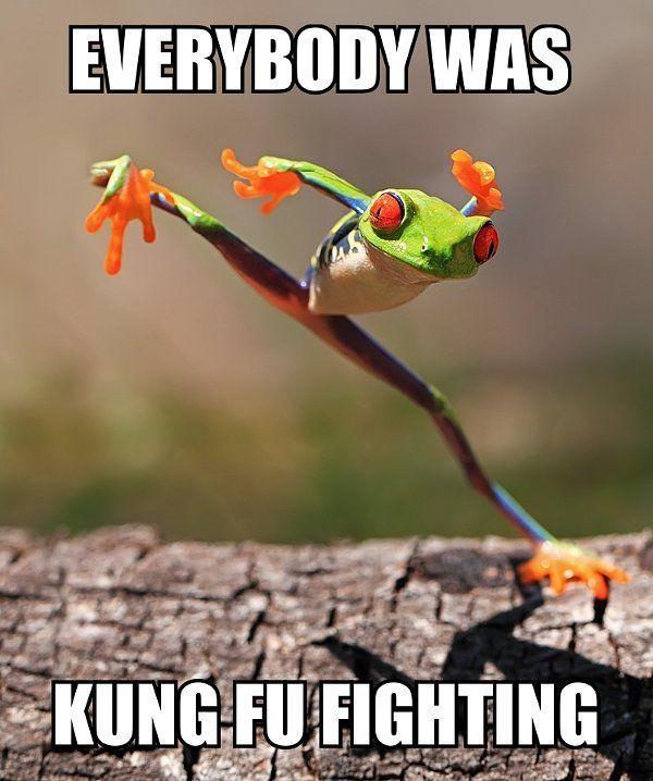 Kung fu fighting frog