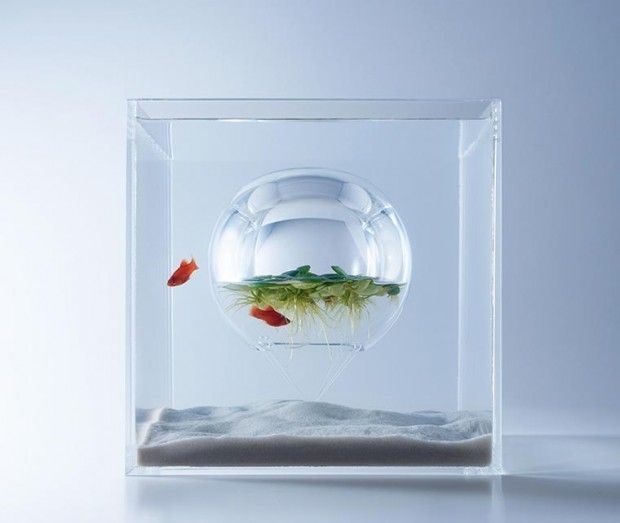 Aquariums contemporains Waterscapes by Haruka Misawa