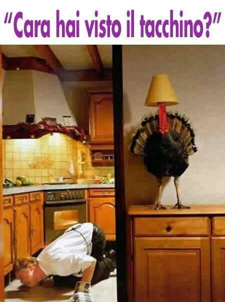 Il giorno del Ringraziamento. ..