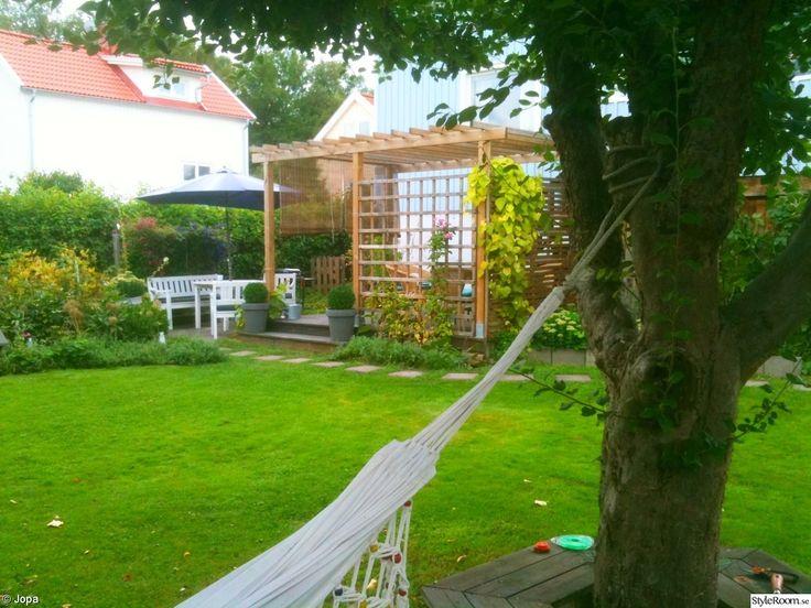 pergola,trädgård