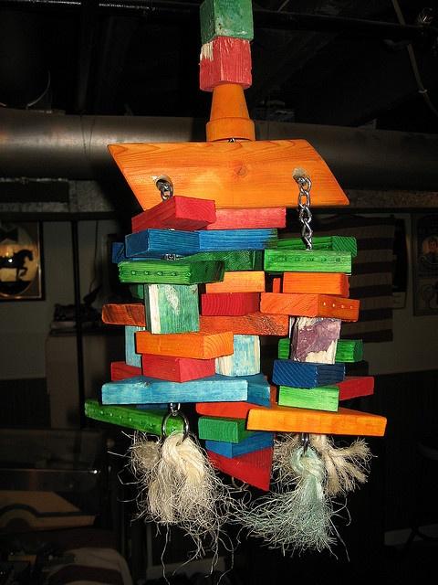 Diy Bird Toys : Images about dyi bird enrichment on pinterest