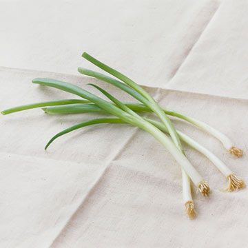 Learn how to chop green onions for your favorite dishes: http://www.bhg.com/recipes/how-to/cooking-basics/how-to-chop-green-onions/?socsrc=bhgpin102513greenonion