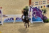 Mens Modern Pentathlon Horse with such a tail swing by mittu12 This is hairstyling beautiful