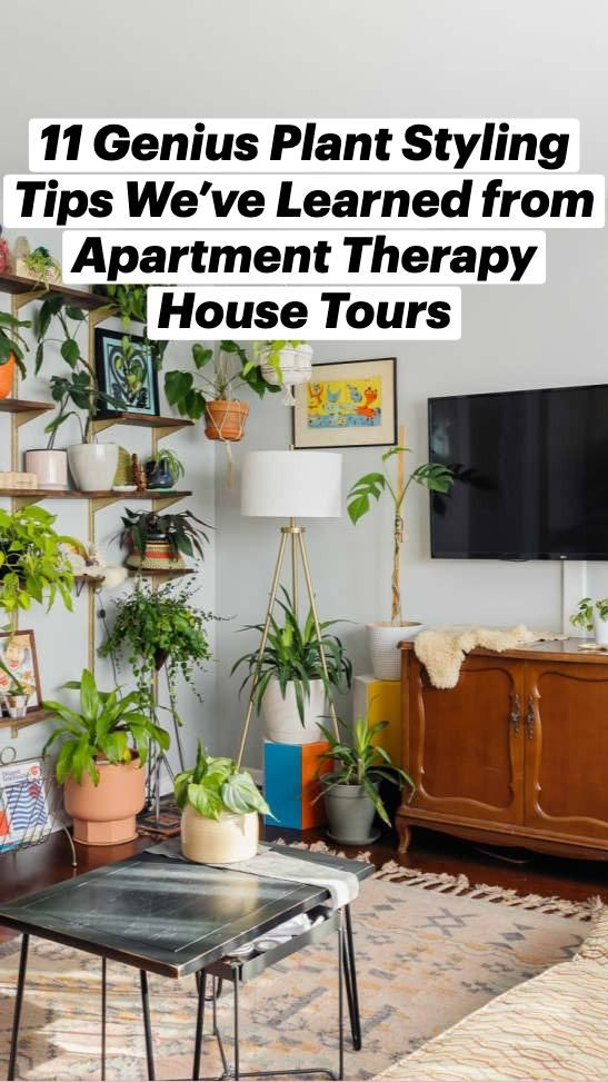 House Plants Decor, Plant Decor, Plants In Living Room, Home Decor Furniture, Diy Home Decor, Home Interior Design, Interior Decorating, Best Indoor Plants, Hanging Plants