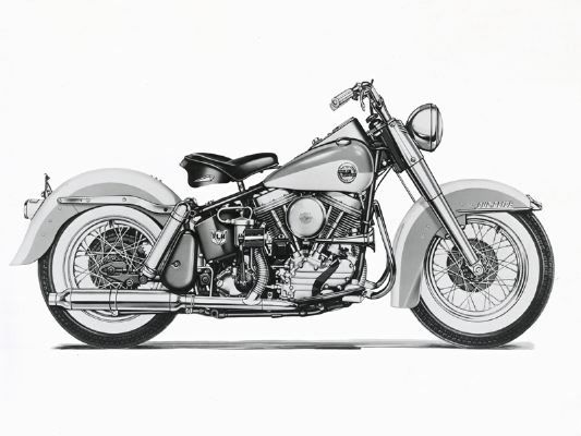 Beautiful! Harley Davidson DuoGlide