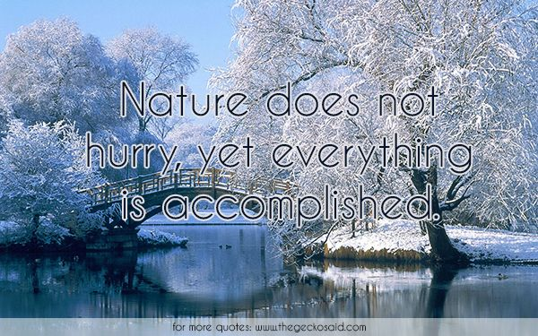 Nature does not hurry, yet everything is accomplished.  #accomplished #beauty #everything #hurry #nature #quotes