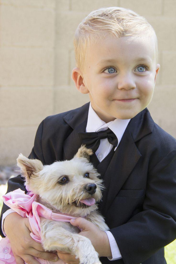 63 best pet weddings images on pinterest pet friendly weddings