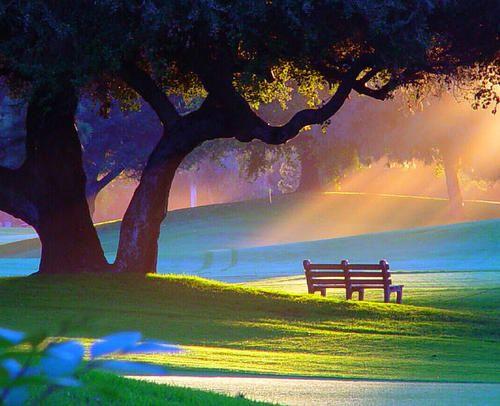 Summer Morning, Alpine Park, Rockford, Illinois.