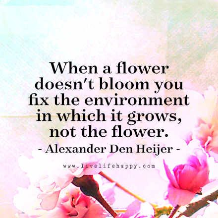 When a flower doesn't bloom you fix the environment in which it grows, not the flower. - Alexander Den Heijer, LiveLifeHappy.com