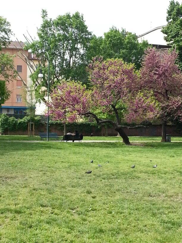 Primavera milanese