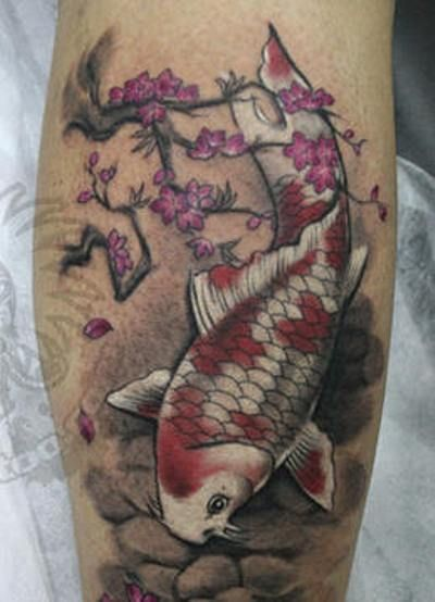Amazing Chinese Koi Fish Tattoos  Tattoo Design