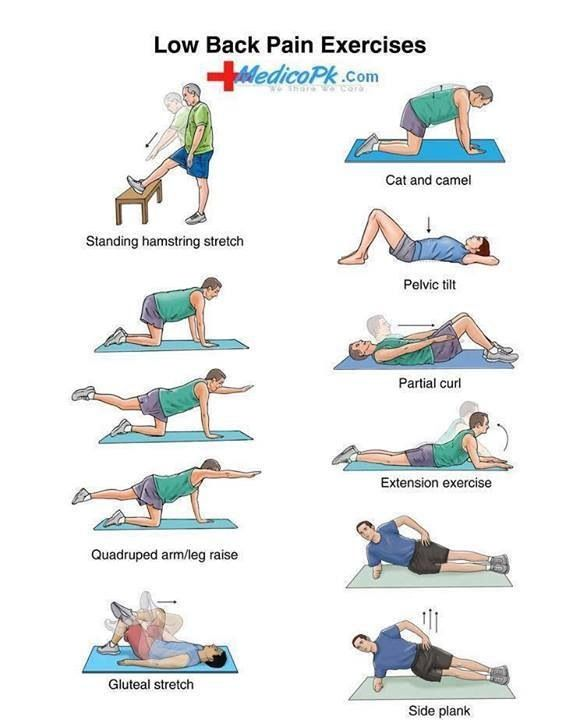 Exercise Workouts For The Back To Relieve Aches & Pain