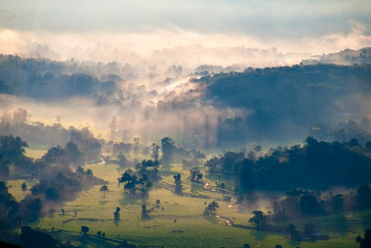 Heaven Fall Down - Corbetsview, Knuckles Mountain Range (දුම්බර කදුවැටිය), Sri Lanka #SriLanka #Knuckles #Mountains