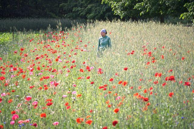 T. in the Flower field near the studio.