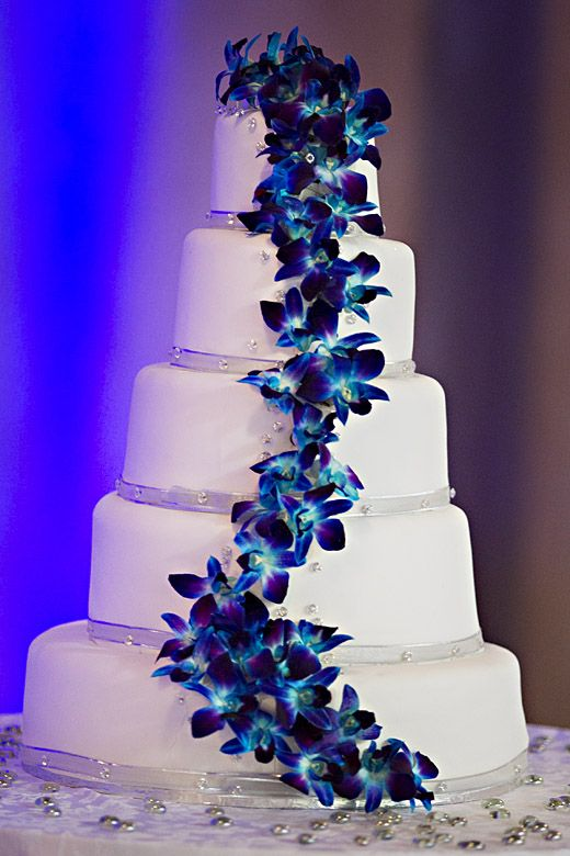 Fresh Blue Dendrobium Orchids on my wedding cake. Very pretty!