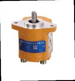 45.00$  Watch now - http://aliqzk.worldwells.pw/go.php?t=32600193900 - Hydraulic pump CBW-F201.5-AFP gear pump high pressure oil pump 45.00$