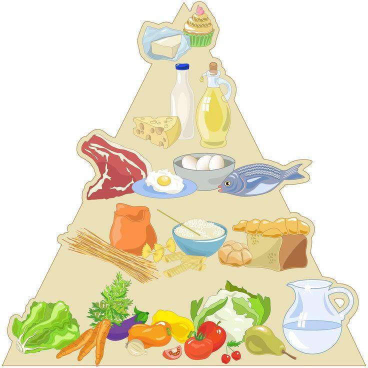 Glucides, lipides et protéines, les nutriments utiles de l ...